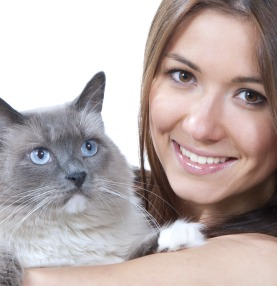 Estate planning and your pets